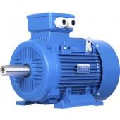 Электродвигатель АИМ 100 L2-(5,5 кВт, 3000 об/мин)